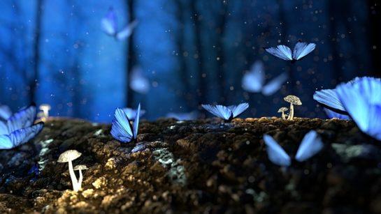 EdenFlow - Votre communauté spirituelle et de développement personnel. Spiritualité, bien-être, Méditation, Mythologie, Anges, Archanges, Animaux Totems, Astrologie, Numérologie, Tarot, Oracle, Runes, arts divinatoires, Quiz, review, test de personnalité, Jeux de connaissance de soi, Druide et Chamane, Pagan, Wicca, Féminin Sacré..
